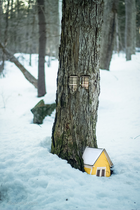 Tiny-Tree-Dwellings-4