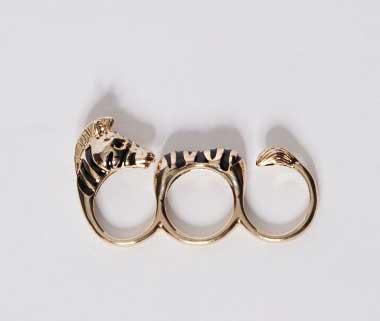 zebra_ring