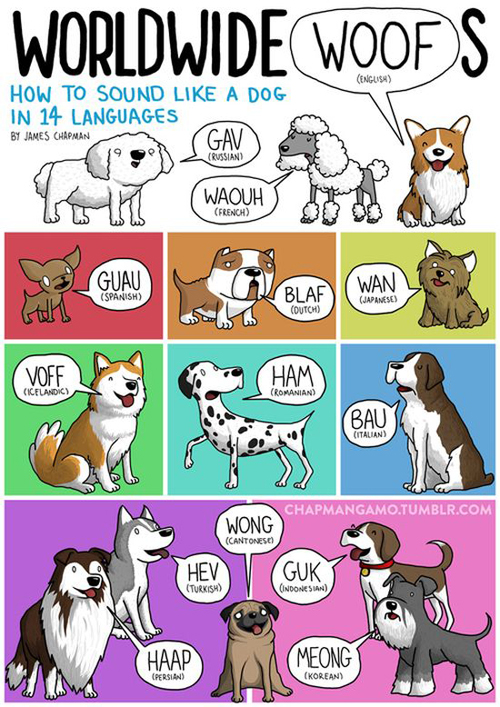 The-Different-Noises-Animals-Make-In-Other-Languages-By-Illustrator-James-Chapman-1