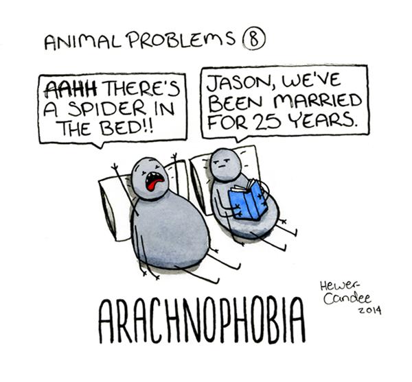 animal-problems-4